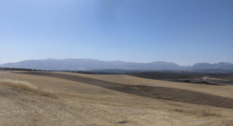 Rutas a Caballo, Vistas de las Sierras de Málaga - Cortijo Las Minas