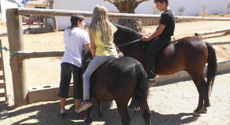 Ponies at Summer Camp - Cortijo Las Minas