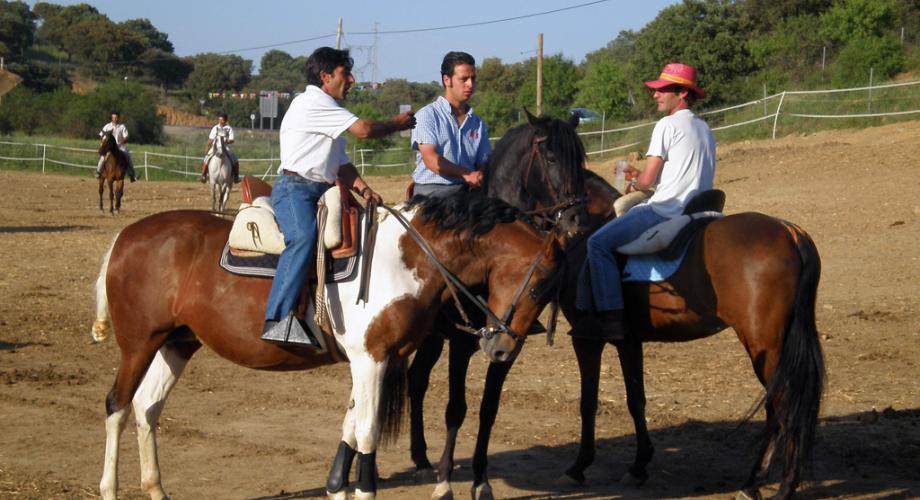Carrera de Cintas en el Centro- Cortijo Las Minas