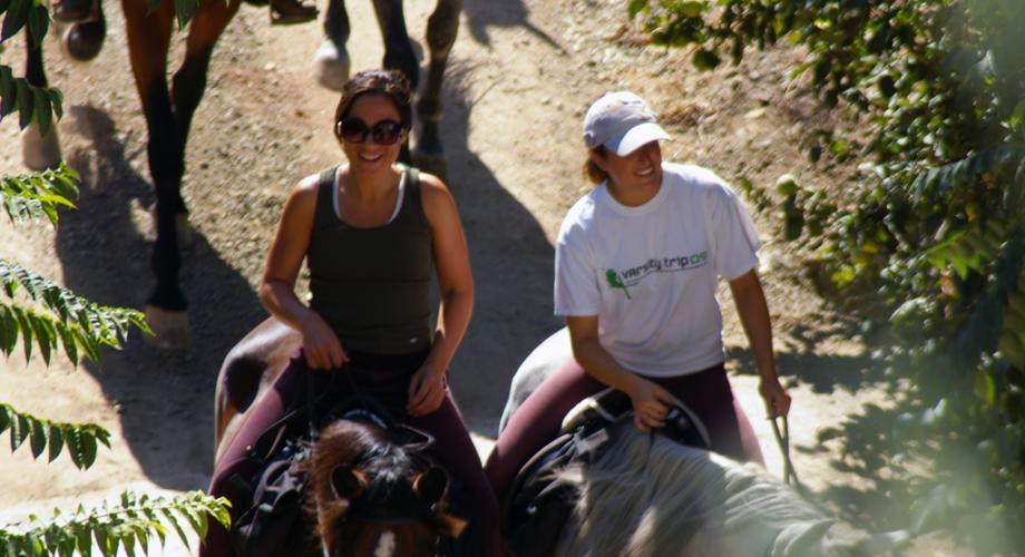 Rutas a Caballo en Grupo- Cortijo Las Minas