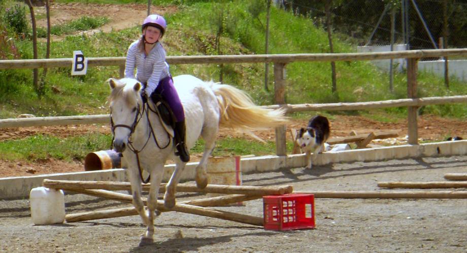 Ejercicio Salto Clase Equitación- Cortijo Las Minas