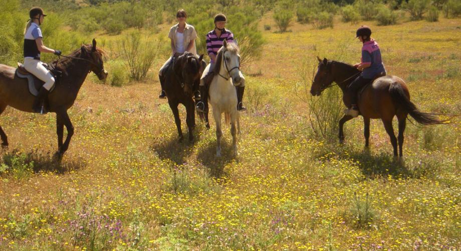 En Ruta a Caballo- Cortijo Las Minas