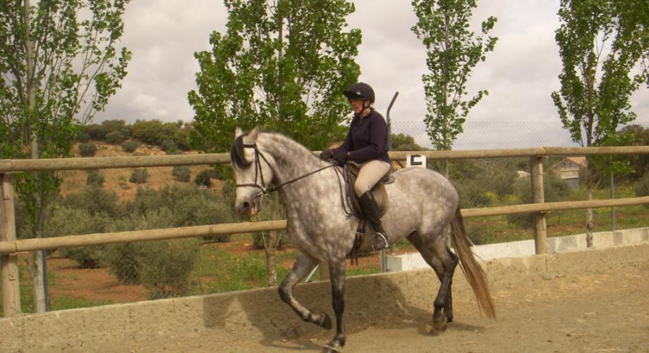 Momento Clases Equitación- Cortijo Las Minas