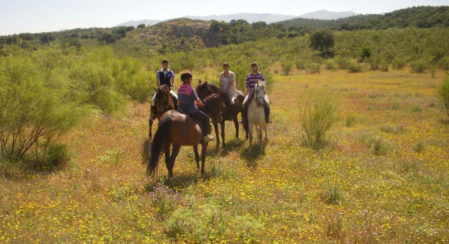 Rutas a Caballo- Cortijo Las Minas
