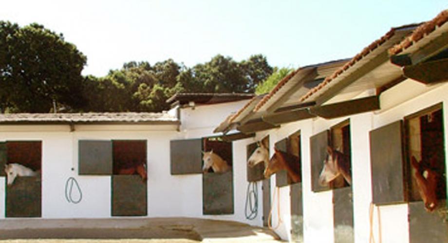 Cuadras- Cortijo Las Minas