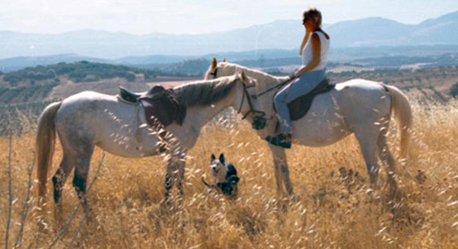 Vistas durante Ruta a Caballo- Cortijo Las Minas